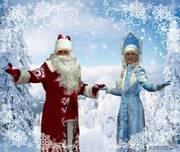Дед Мороз и Снегурочка на дом в Новый год 2011 Вологда
